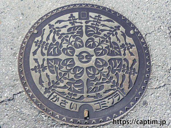 201911_マンホール_かさい_コミ・プラ_002_加西市越水町_ブログ用